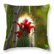 Firecracker Cacti Throw Pillow