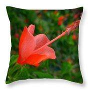 Firecraker Hibiscus Flower Throw Pillow