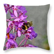 Fireweed Bee Throw Pillow