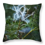 Fireweed Flame Out But Spreading Throw Pillow