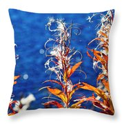 Fireweed Flower Throw Pillow by Heiko Koehrer-Wagner