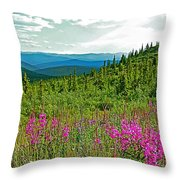 Fireweed Near Top Of The World Highway-alaska Throw Pillow