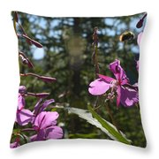 Fireweed Number 10  Throw Pillow