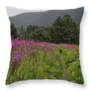 Fireweed Path At Fish Creek Throw Pillow