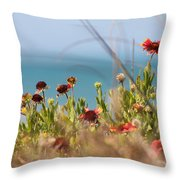 Firewheels By The Sea Throw Pillow