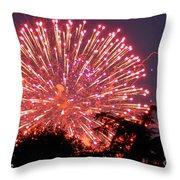 Fireworks 2014  1 Throw Pillow