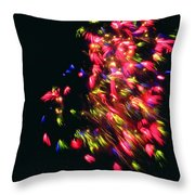 Fireworks At Night 4 Throw Pillow