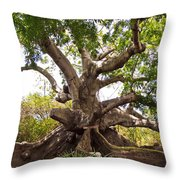 Firmly Grounded Throw Pillow
