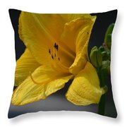 First Bloom - Lily Throw Pillow