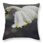First Blossom Throw Pillow