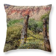 First Creek Throw Pillow