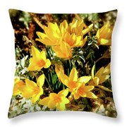 First Crocus Serenade Throw Pillow