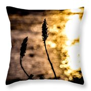 First Day Throw Pillow