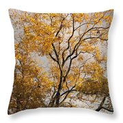 First Day Of Winter 2 Throw Pillow