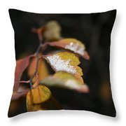First Dusting Throw Pillow