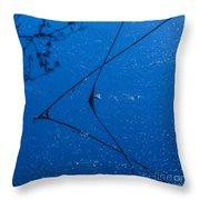 First Frost-3 Throw Pillow