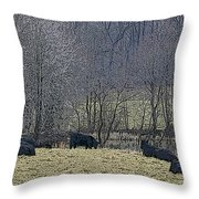 First Frost Throw Pillow by Don Perino