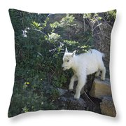 First Ledge Leap Throw Pillow