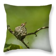 First Look Throw Pillow