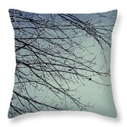 First Of Winter Throw Pillow