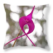 First Prize Throw Pillow by Rona Black