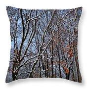 First Snow 4 Throw Pillow