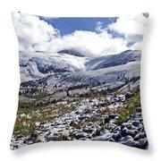 First Snow Throw Pillow