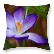 First Spring Crocus Throw Pillow