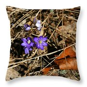First Spring Flowers Throw Pillow
