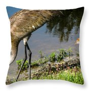 First Time At The Lake Throw Pillow