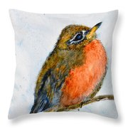 First Year Throw Pillow
