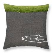 Fish And Arrow On Pavement Throw Pillow