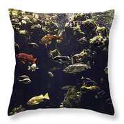 Fish Aquarium Throw Pillow