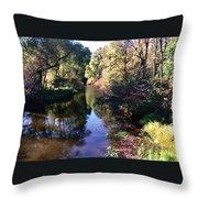 Fish Creek Throw Pillow