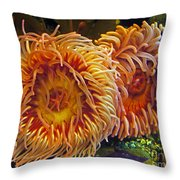 Fish Finders Throw Pillow