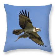 Fish For Dinner Throw Pillow