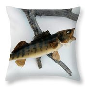 Fish Mount Set 02 A Throw Pillow