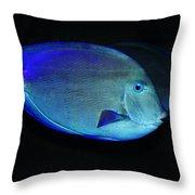 Fish Not For Dinner Throw Pillow