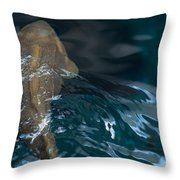 Fish Of The St. Lawrence Throw Pillow