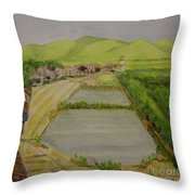 Fish Ponds Throw Pillow by Lilibeth Andre