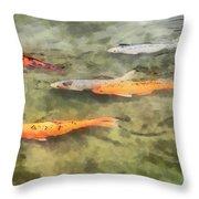 Fish - School Of Koi Throw Pillow by Susan Savad
