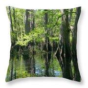 Fisheating Creek Throw Pillow