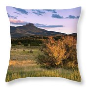 Fishers In Summer Throw Pillow