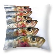 Fishes Throw Pillow by Bernard Jaubert