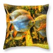 Fishfull Thinking Throw Pillow