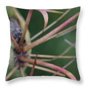Fishhook Barrel Cactus Spines Throw Pillow