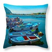 Fishing Livelihood  Throw Pillow