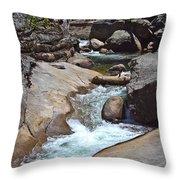 Fishing Stream Throw Pillow