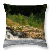 Fishing The Spillway Throw Pillow