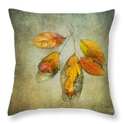 Five Autumn Leaves Throw Pillow